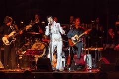 Elvis-120